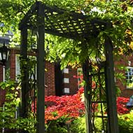 St Louis Pergola Construction