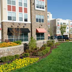 Commercial Landscaping St Louis